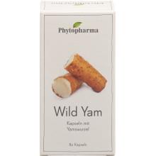 PHYTOPHARMA Wild Yam caps 400 mg 80 pce
